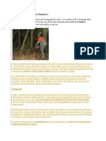 When and How to Harvest Bamboo.docx