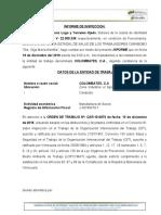 INSPECCION COLOMBATES.doc