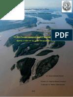 Tesis_Pereira.pdf-PDFA