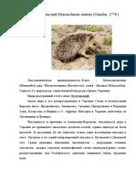 Документ (11).docx