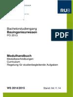 modulhandbuch_ws_1415_bsc_bi_komplett_stand_nov14