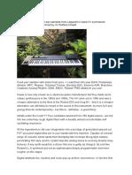 KawaiK4information.pdf