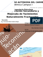 CAMPO Jujo-Tecominoacán