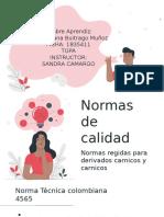 Normas carnicos.pptx