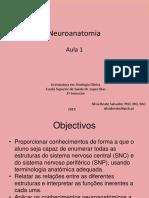 1.Intro + Telencefalo_Conf Ext e areas funcionais.pdf
