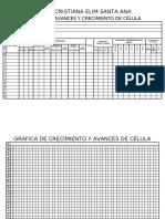 Cuadernillos de CÉLULA JUVENIL