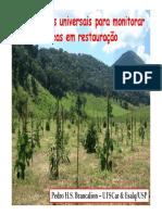 Indicadores universais para monitorar areas em restauracao.pdf