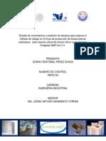 Estudio Chiaplast ITTG.pdf