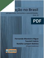 Educação No Brasil Perspectivas, Horizontes e Possibilidades Vol2