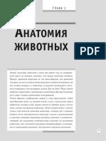 Фостер У. - Анатомия для художников (Полный курс рисования) - 2018-Part2