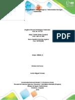 Fase 3_Analizar e interpretar_358042_9.docx