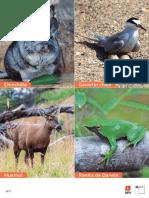 articles-145605_recurso_pdf.pdf