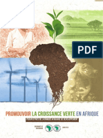 Promouvoir la croissance verte en Afrique