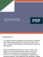 gestacion.pptx