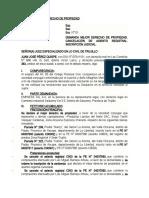 DEMANDA MEJOR DERECHO DE PROPIEDAD