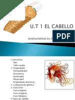 T-1-EL-CABELLO.pdf