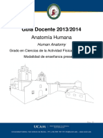 71_1_1_bas_anatomia_humana_71_1_1_bas.pdf