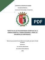 belmonte_campillo_carmen.pdf