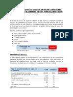 DETERMINANTES SOCIALES DE LA SALUD EN CONDICIONES DEL ENTORNO EN EL DISTRITO DE SAN JUAN DE LURIGANCHO