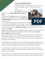 DEFINICIÓN DESITUACIÓN SOCIAL.docx