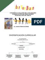 Diversificacin Curricular