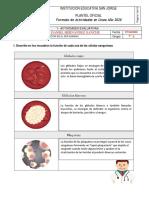 CIENCIAS NATURALES Y EDUCACION AMBIENTAL Actividad Final.pdf