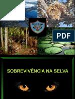 Técnicas de Sobrevivência SIESP 2020