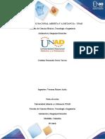 Ejercicios Unidad 3 fase 4 Individual