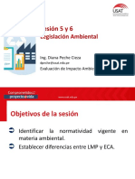 VIII_EIA_Sesión 5 y 6.pdf