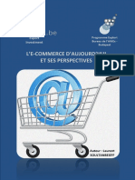 E-commerce-le-rapport-(version-finale)