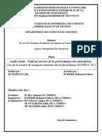 audit impooooo.pdf