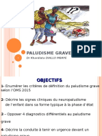 PALU-GRAVE-Kaj.ppt