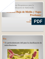 Pruebas-bioquimicas-RM-y-VP_1_2