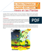 La-Fotosíntesis-en-las-Plantas-para-Segundo-de-Primaria.pdf