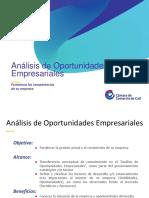 An_lisis_de_Oportunidades_con_plantilla_CCC.pdf