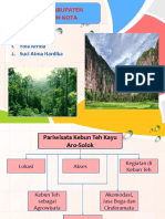 PPt Solok