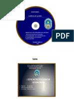 AE- Objetivos de auditoria -13- Figueroa Fernandez, Karlo Marcelo.pptx