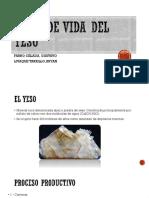 CICLO DE YESO.pdf