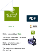 all-about-rabies-presentation-ages-12-14-english