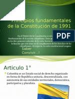 PRINCIPIOS DE LA CONSTITUCIÓN (1)