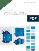 WEG Medium and High Voltage Three Phase Induction Motor 632 Brochure English