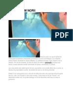 cum pictam norii