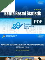Paparan Indikator Ketenagakerjaan Lampung Feb 2019