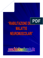 neuromus4