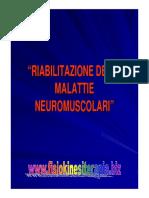 neuromus8