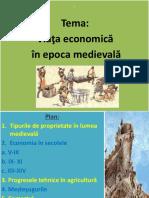 Viata economica in Ev Mediu.pptx