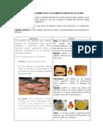 TALLER CAMBIOS FISICOQUIMICOS DE LOS ALIMENTOS