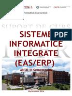 Silabus Sisteme Integrate EAS ERP (2014)