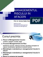 curs MG RISC IN AFACERI_2019_2020 part I-IV print (1).pdf