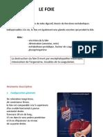 FOIE.pdf